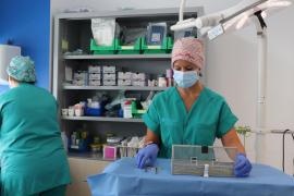 El Servicio de Cirugía Plástica de Can Misses atiende a 200 mujeres por cáncer de mama en un año