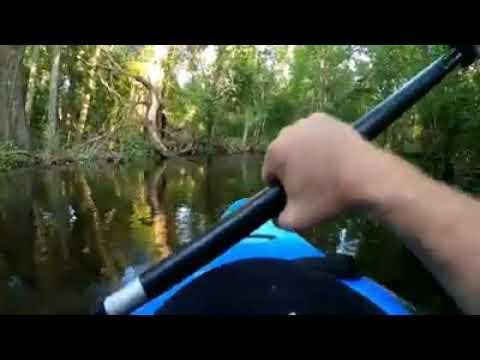 Un kayakista comparte el impactante ataque de un caimán en el río