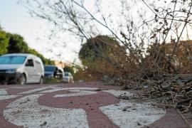Vecinos y comerciantes de Platja d'en Bossa se quejan de que «está hecha una pena»