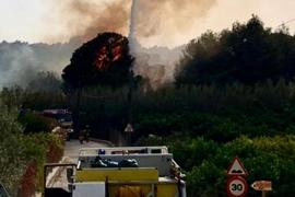 El incendio en una zona agrícola en Santa Gertrudis, en imágenes (Fotos: Arguiñe Escandón /Daniel Espinosa).