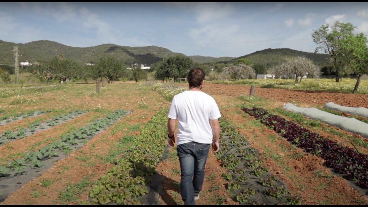 Buscan una generación de agricultores y pescadores en Ibiza con un vídeo promocional