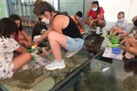 El Consell de Ibiza organiza actividades para difundir el conocimiento del patrimonio entre los más pequeños