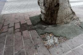La falta de limpieza en la ciudad de Ibiza, en imágenes .