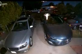 Pillan a 'Campanilla' revoloteando delante de una cámara de seguridad