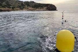 Vila amplía el canal de natación y lo conecta con la playa de ses Figueretes