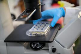 Baleares invierte 400.000 euros para luchar contra el coronavirus