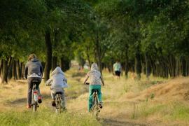 Estos son los medios de transporte protagonistas del verano y sirven tanto para divertirse como para viajar