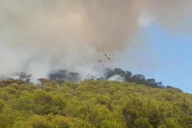 Alarma por un virulento incendio en sa Talaia de Sant Antoni
