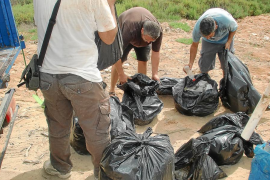 300 kilos de residuos menos en ses Feixes