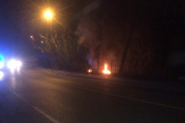 Extinguido un incendio forestal en una zona de pinada del Port des Torrent