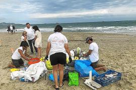 Plastic Free Ibiza y Formentera llama a participar de forma individual o en grupos en el 'World Clean up Day'