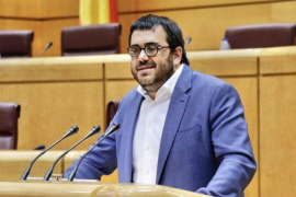 El senador de MÉS per Mallorca, Vicenç Vidal,