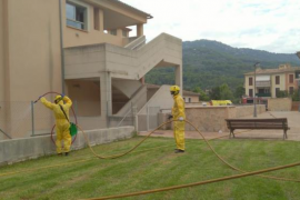 El Govern interviene la residencia Bell Entorn de Mallorca