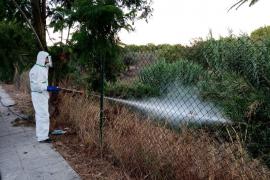Primer afectado del virus del Nilo fuera de Andalucía