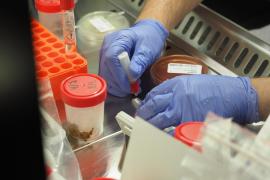 Fallece una persona por coronavirus este fin de semana en Ibiza