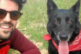 Un padre y su hijo, multados en Mallorca con 3.000 euros por ir al veterinario durante el estado de alarma