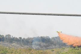 Una joven reconoce ser la autora de cuatro incendios forestales en Mallorca