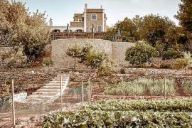 Sant Antoni cierra un agroturismo y restaurante ilegal con 24 infracciones graves