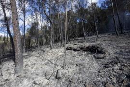 El día después del incendio en Sant Josep, en imágenes. (Fotos: Daniel Espinosa)