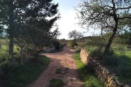 El Consell encarga un estudio sobre los caminos tradicionales para ir a las iglesias