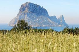 El Govern incumplirá los plazos marcados por la UE para los planes de gestión de zonas protegidas