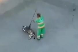 Un barrendero mima a un perro callejero al 'barrerlo' con su escoba y se hace viral