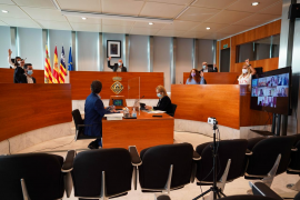 El pleno del Consell aprueba de forma definitiva el Plan de Transporte insular