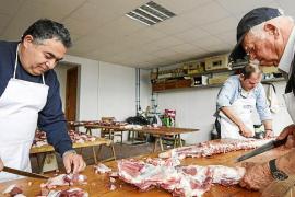El Govern rectifica y permite ahora a los ganaderos vender cerdos para 'matances'