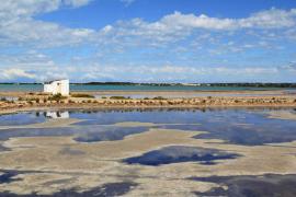 Formentera promociona una isla sostenible en la World Travel Market 2020