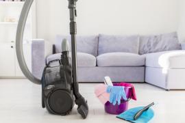 Los ácaros del polvo de casa son perjudiciales: ¿cómo eliminarlos?