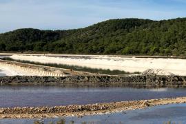 Baleares se sitúa entre las peores CCAA en el ranking general de ecosistemas de impacto en España