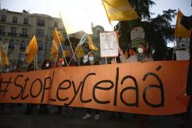 El Consejo de Europa «sigue de cerca» la 'Ley Celaá' y la eliminación del castellano como lengua vehicular