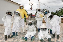 El divertido mundo de las abejas
