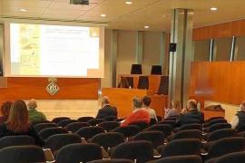 La fundación Ibiza Preservation presentó ayer su informe anual de 2019 en la sede del Consell d'Eivissa y online