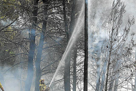 El 40% de los incendios de Balears han sido intencionados
