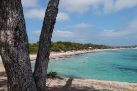 Sancionan a una empresa por realizar charters sin autorización en el Parque Natural de Ses Salines