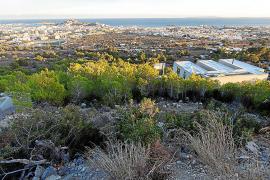 El PP denuncia el «fracaso» de la línea de alquiler joven del Ayuntamiento de Eivissa