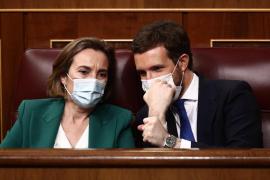 El PP urge a Sánchez a cesar a Iglesias por «alentar» Podemos los altercados por Hasél y pide a la Fiscalía actuar