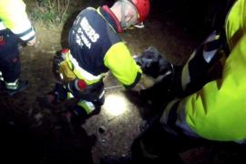 El olfato de los perros, clave en el rescate nocturno de dos mujeres en Cala d'Aubarca