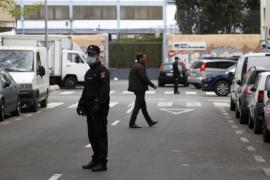 La policía localiza los cadáveres de dos personas en fase de descomposición junto a sus perros en Palma