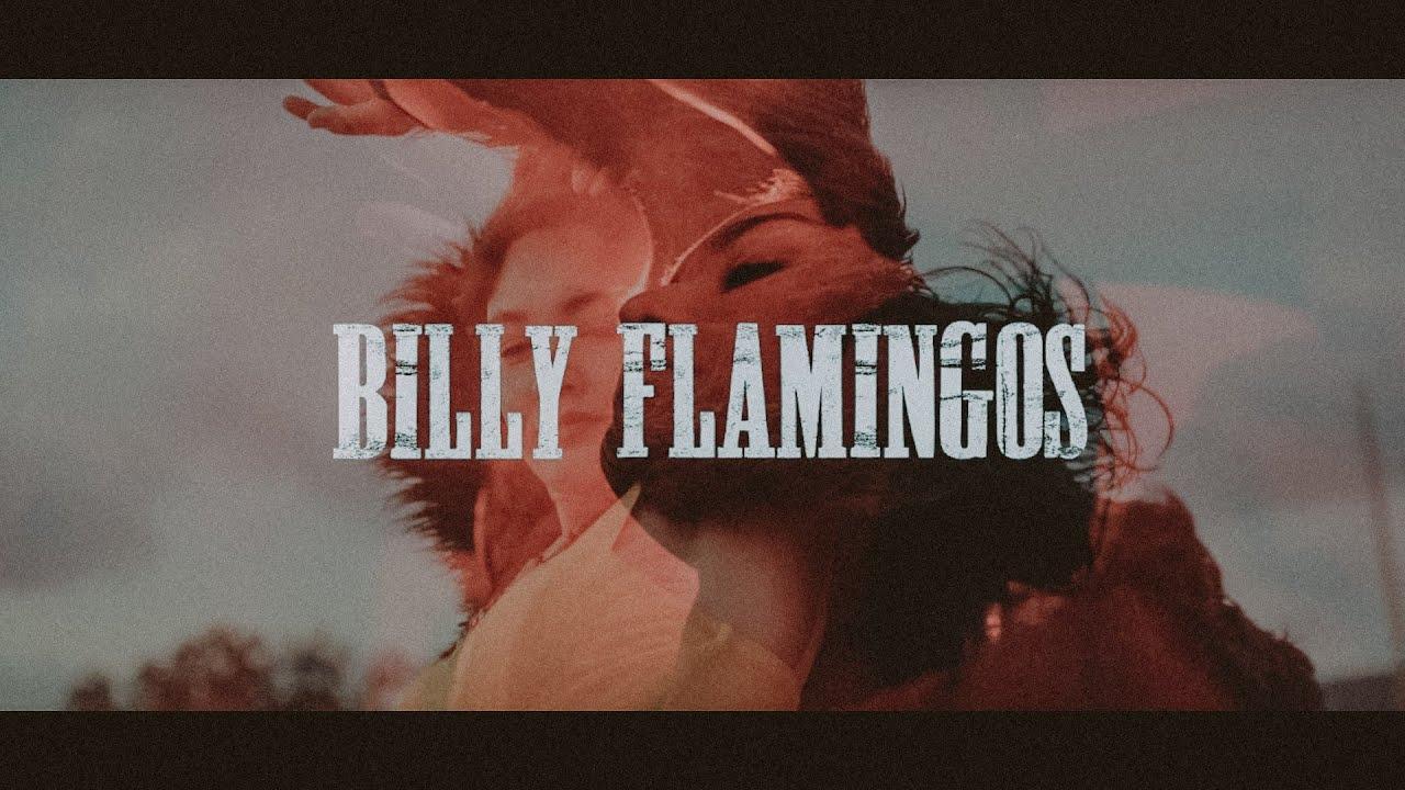 'Estanque euforia': el primer paso hacia la evolución de Billy Flamingos