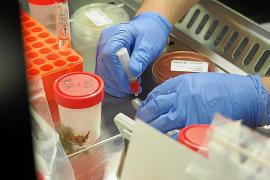 Bajan los pacientes hospitalizados por coronavirus en Ibiza a cifras de hace tres meses