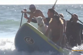 Pismo y Grover, dos cabras instructoras de surf muy populares en California