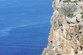 Encuentran en buen estado a la mujer desaparecida en Ibiza