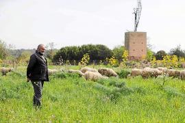 Los ganaderos advierten sobre el peligro de extinción de los rebaños