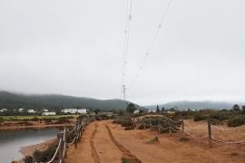 Fiscalía se querella contra Endesa por las aves muertas en líneas eléctricas