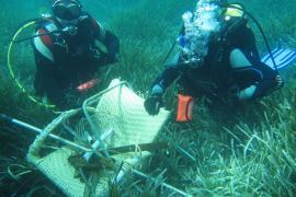 200 kilos de basura retirados del fondo marino de Cala Bassa