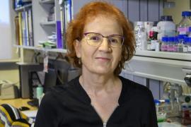 La viróloga Margarita del Val da su opinión sobre la vacuna de AstraZeneca
