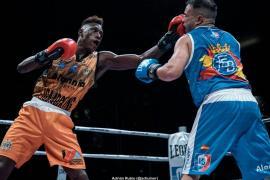 Los Mallorca Lions, quintos en la Liga4Boxing Alannia Resorts de boxeo