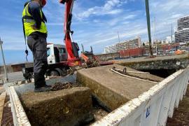 32.000 kilos de residuos menos en la bahía de Portmany